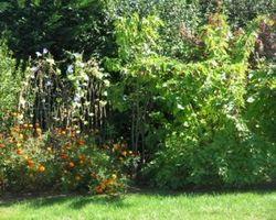 Dupouy Espaces Verts - HONTANX  - Jardinier dans Les Landes